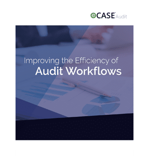 White Paper: Improving the Efficiency of Audit Workflows